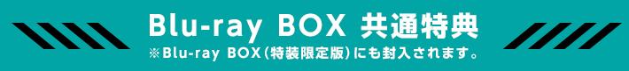 Blu-ray BOX 共通特典 ※Blu-ray BOX(特装限定版)にも封入されます。