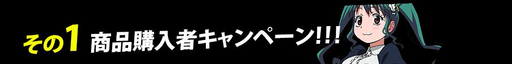 その1 商品購入者キャンペーン!!!