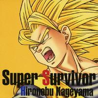 PS2・Wii用ソフト『ドラゴンボールZ~スパーキング!メテオ』 Super Survivor